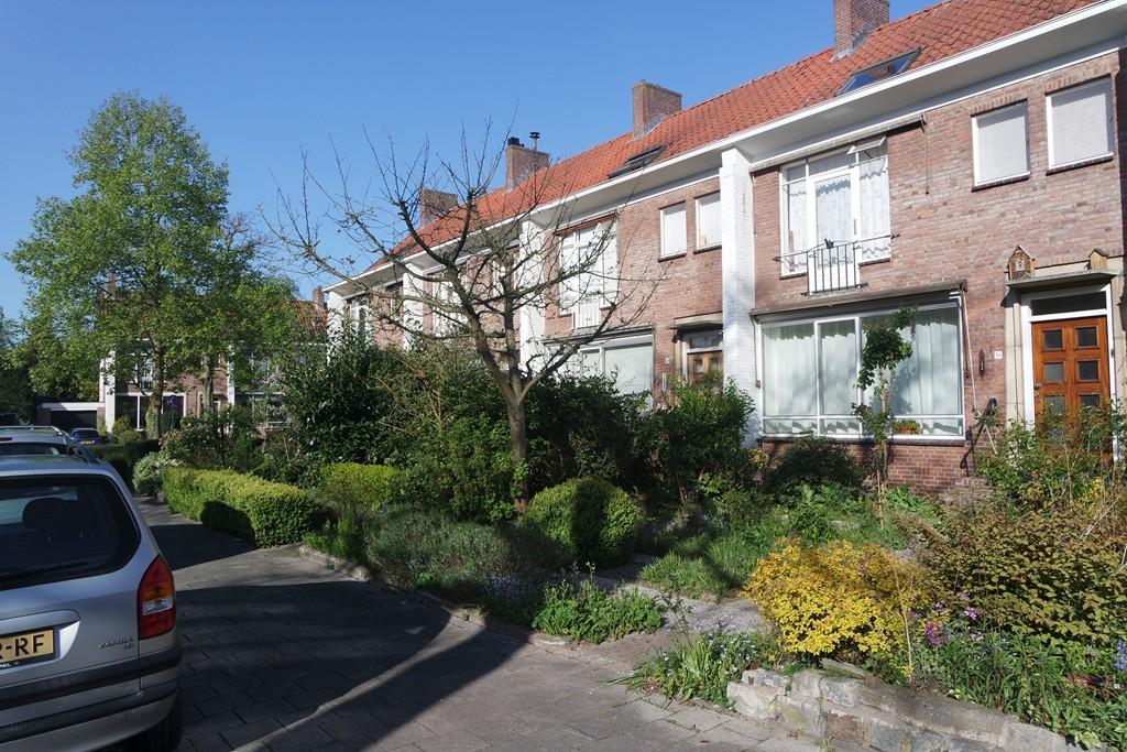 Rapelenburglaan, Eindhoven