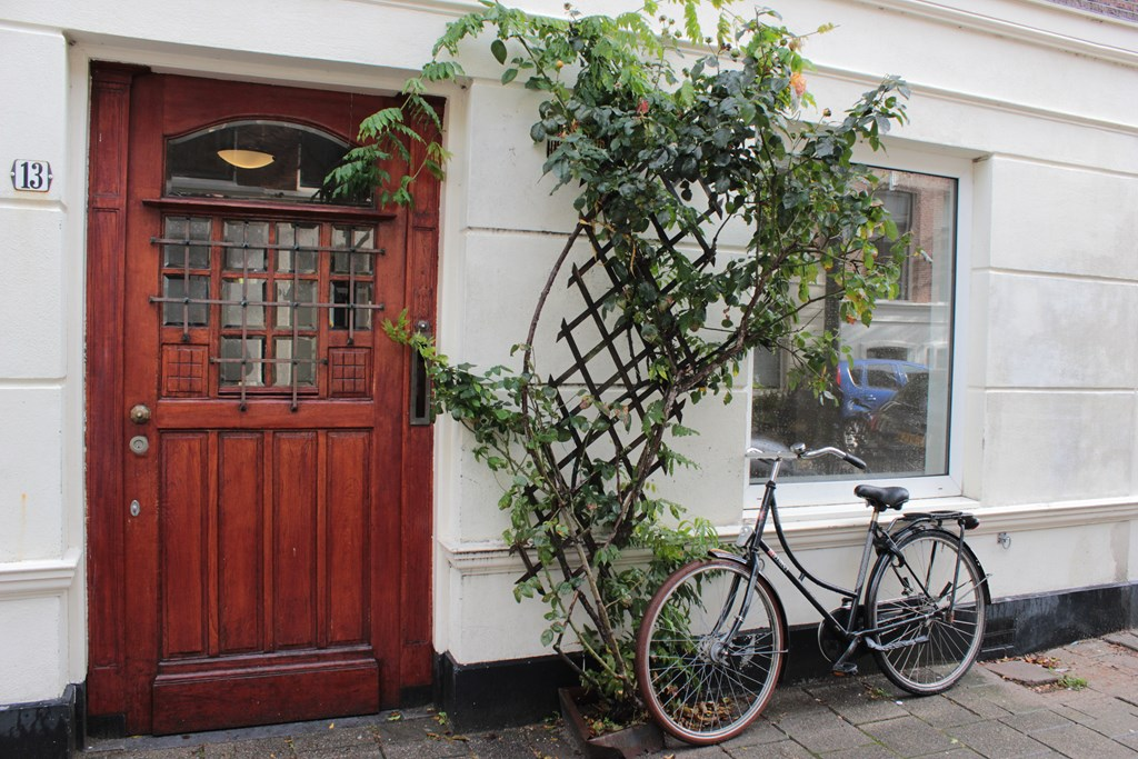 Barentszstraat, The Hague