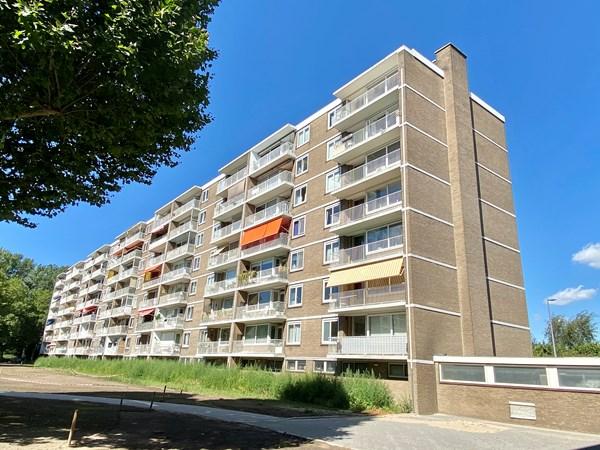 Rotterdam Cornelis Bloemaertsingel  33  3601928