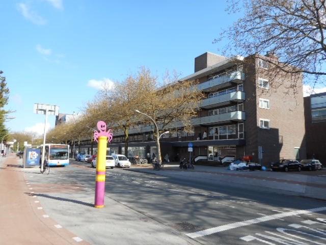 Ruys De Beerenbrouckstraat