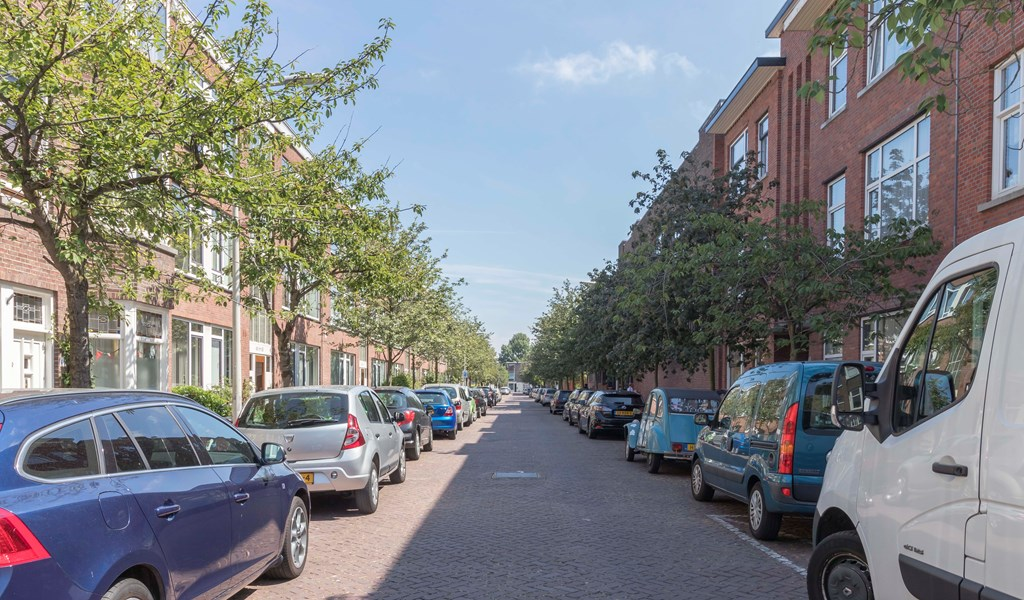 Merkusstraat, The Hague