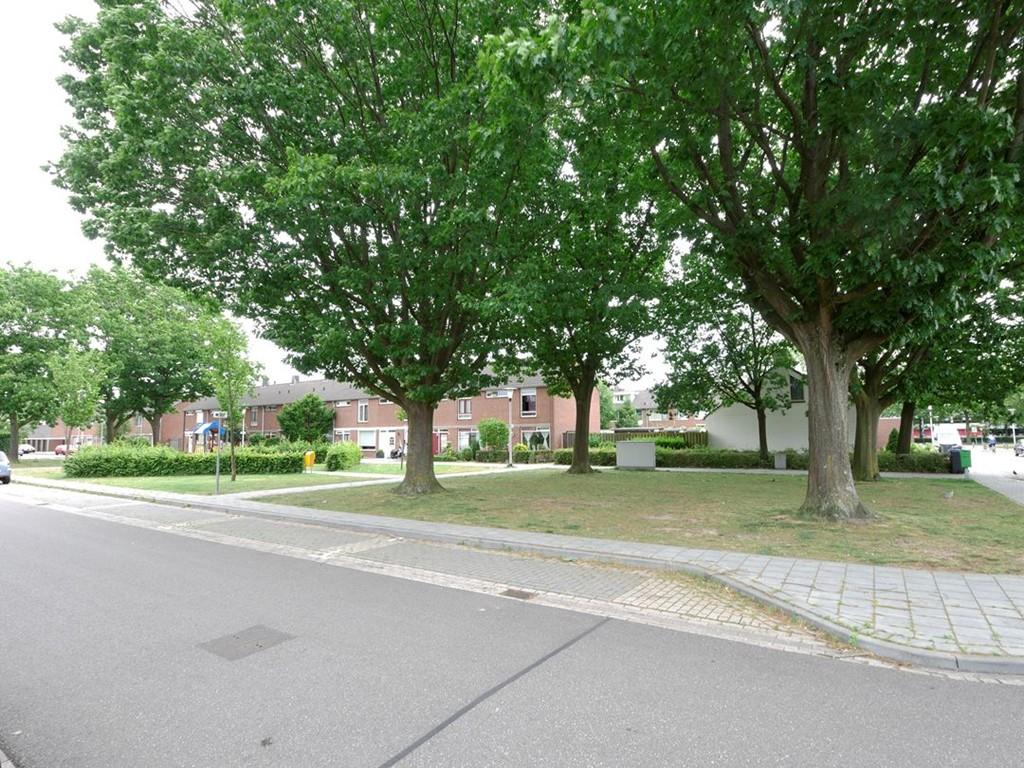 Patrijsstraat, Helmond