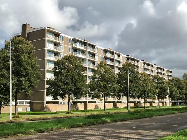Rotterdam Edmond Hellenraadstraat  58  3236549
