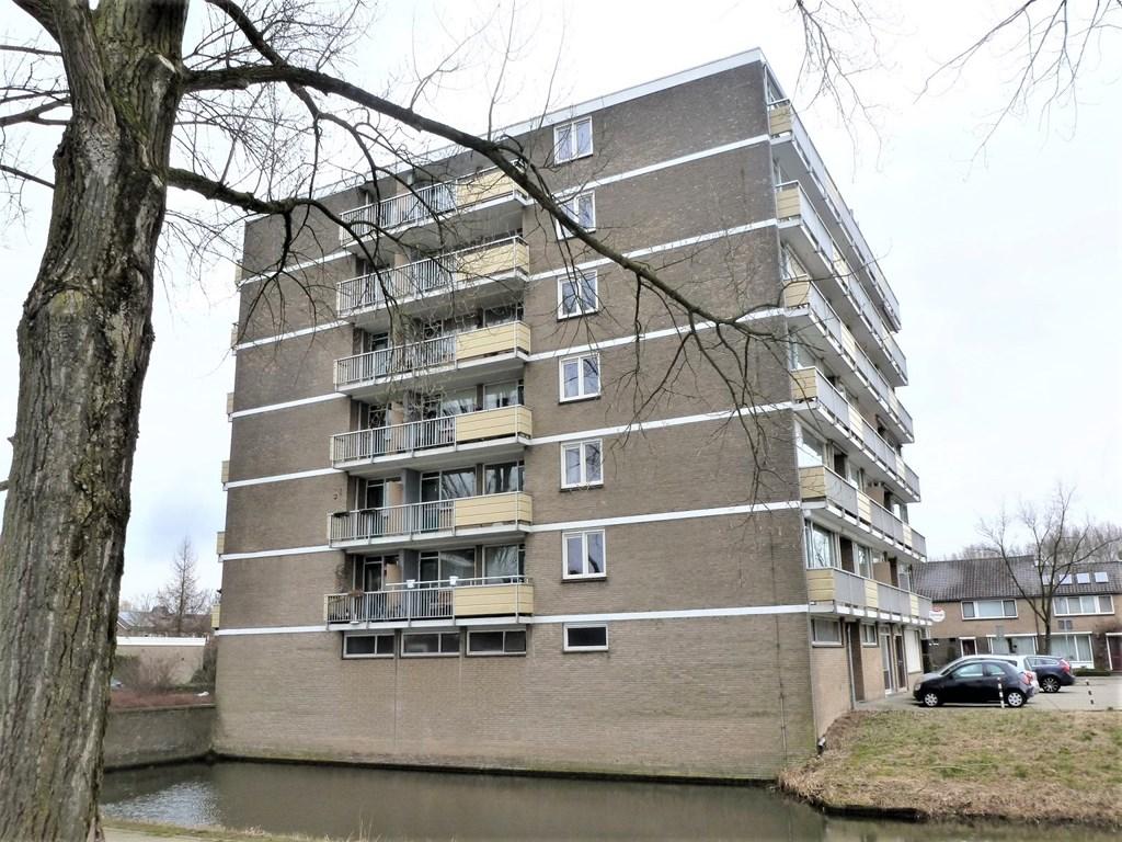 Wildenborglaan, Arnhem