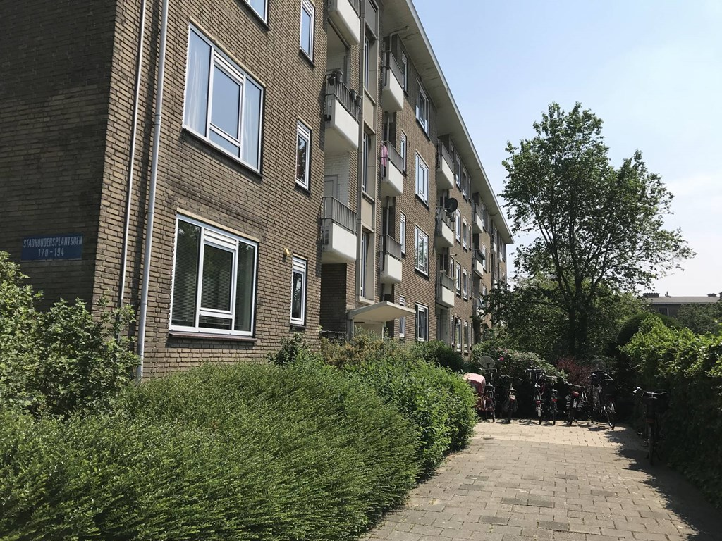 Stadhoudersplantsoen, The Hague