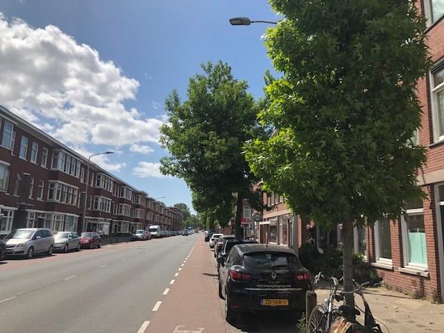 Hoefkade, The Hague