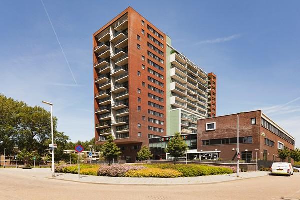 Rotterdam Hollands Tuin  136  3198333