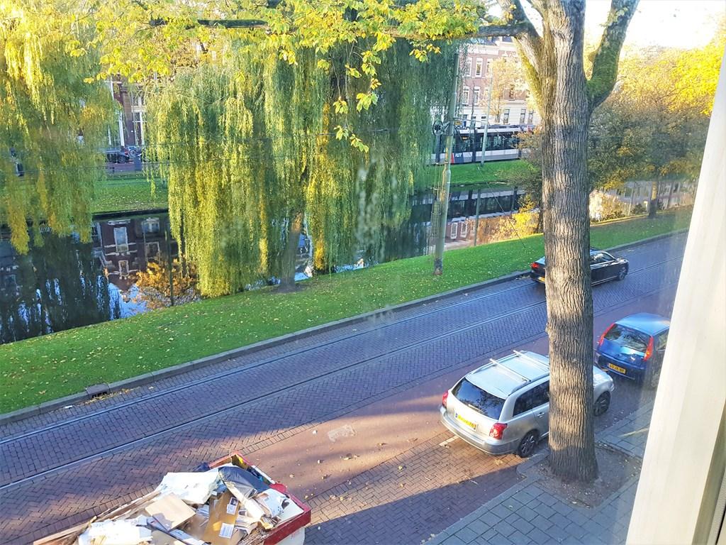 Noordsingel, Rotterdam