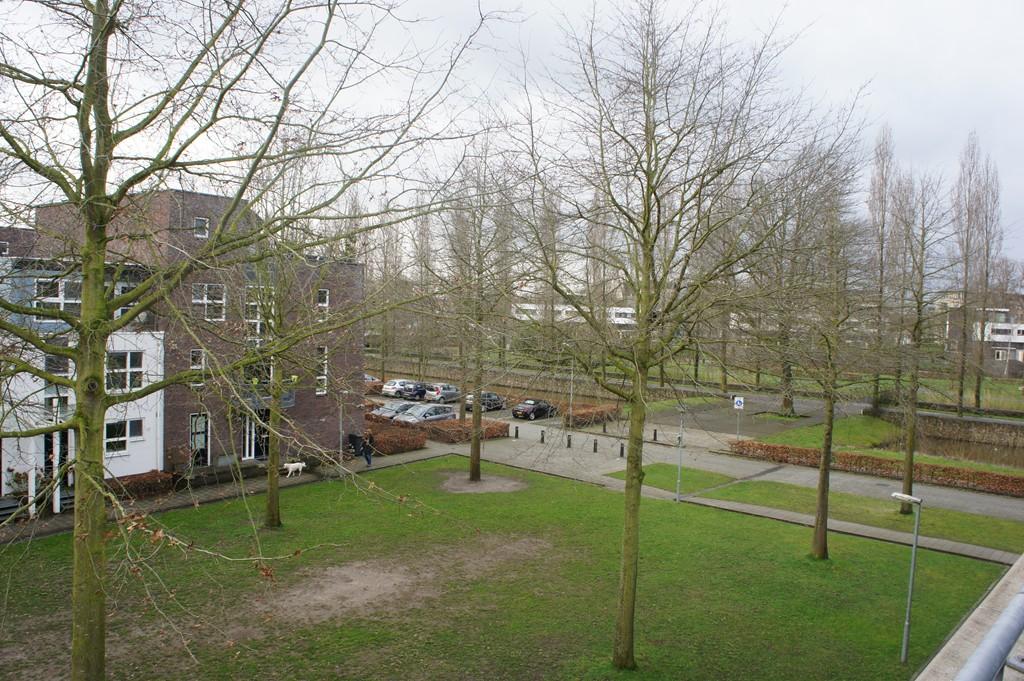 Concordialaan, 's-Hertogenbosch