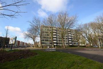 Het Kleine Loo, The Hague