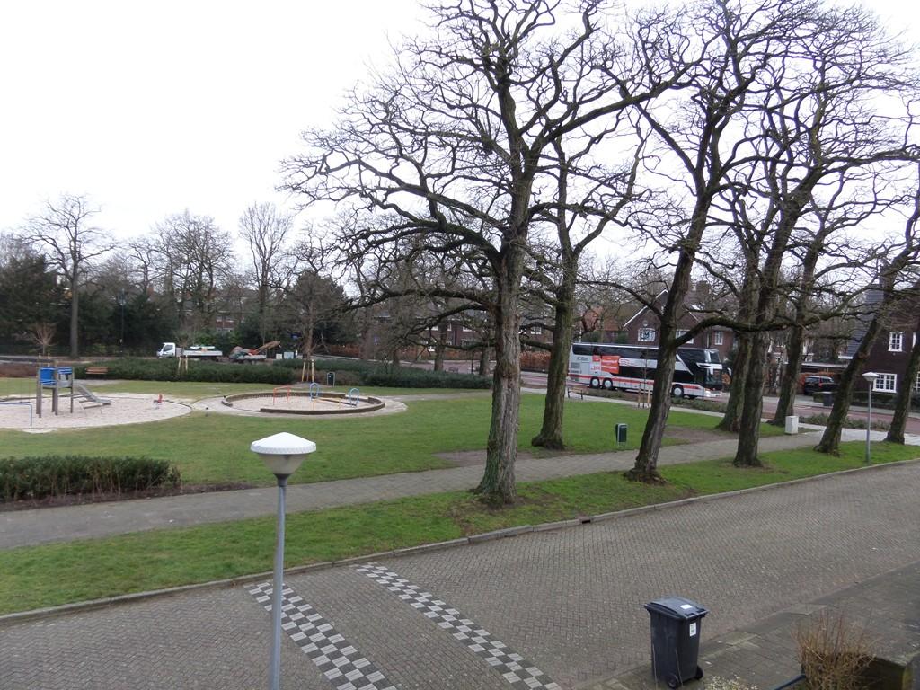 Zilvermeeuwlaan, Eindhoven
