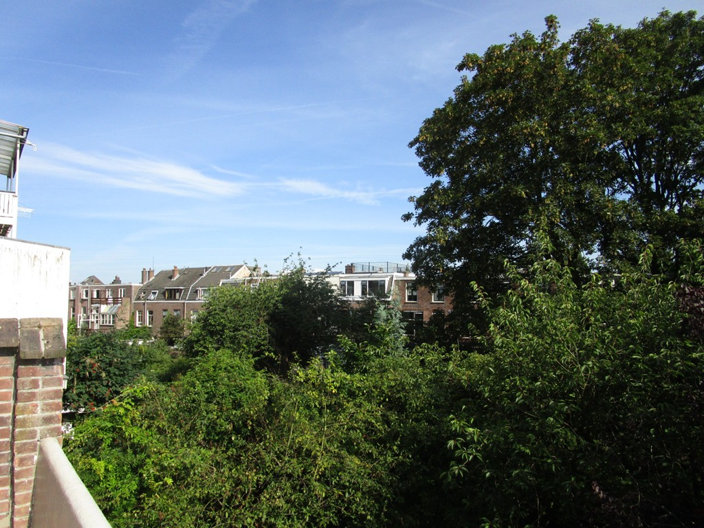Weerdsingel Oostzijde, Utrecht