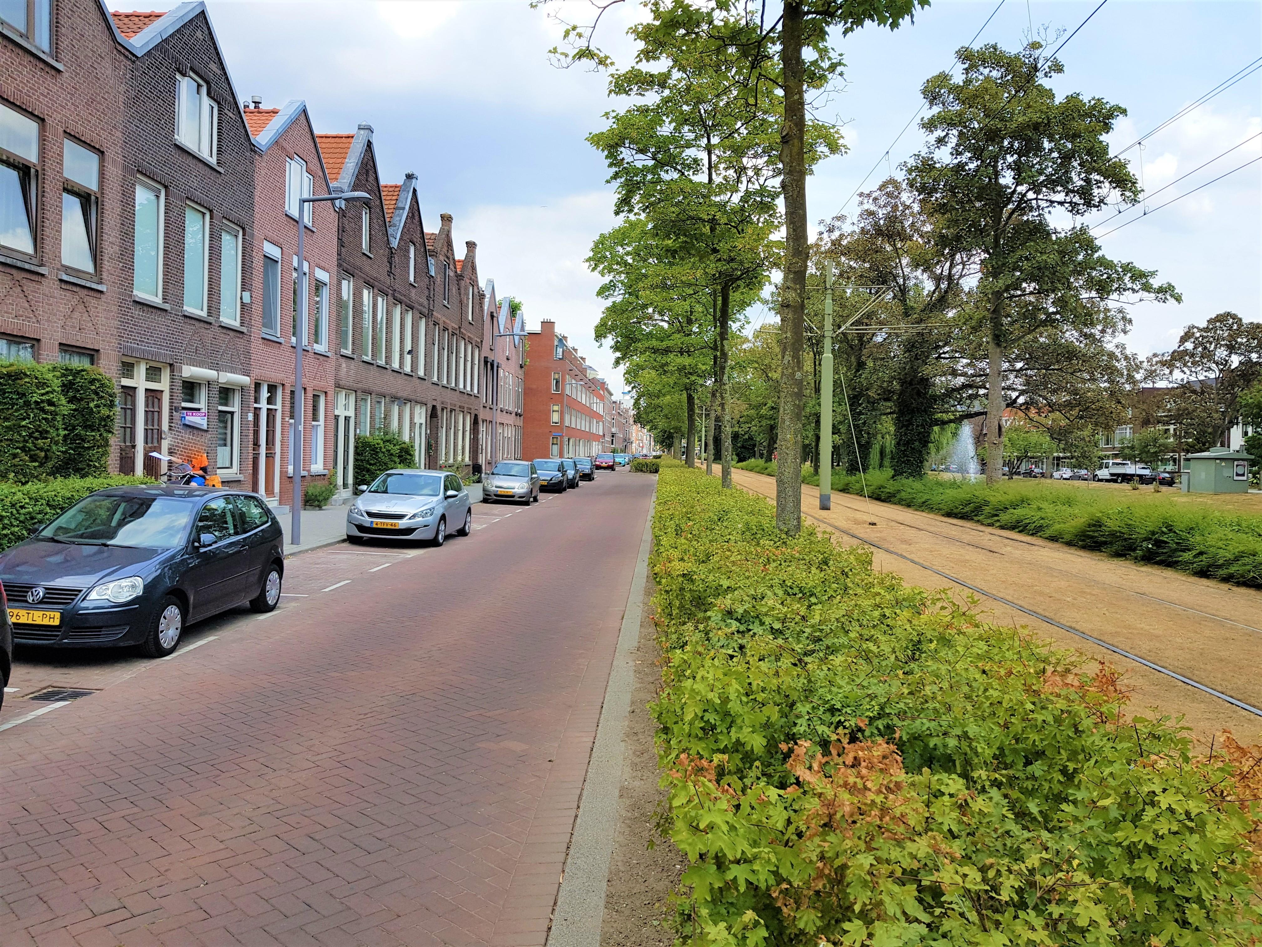 For rent: Boergoensevliet 67B, 3082KK Rotterdam