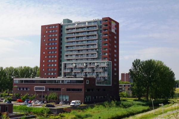 Rotterdam Hollands Tuin  152  3649114
