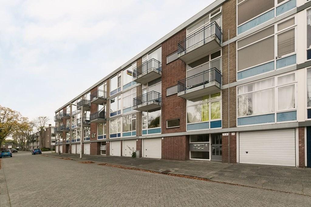 Steenvoorde, Rotterdam