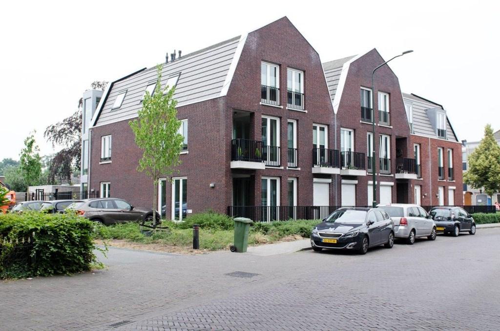 Hendrik Veenemanstraat, Son