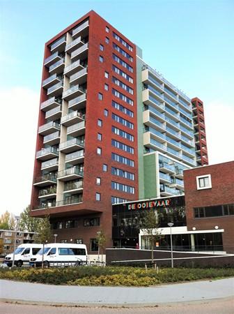 Rotterdam Hollands Tuin  140  3600509