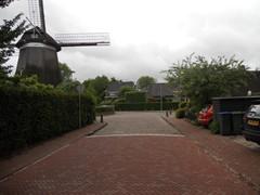 Molenaar, Laren