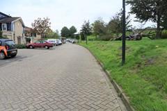 Wildemanskruid, Amersfoort