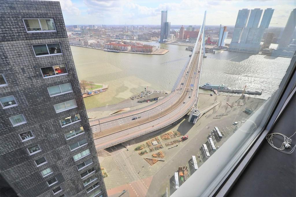 Gedempte Zalmhaven, Rotterdam