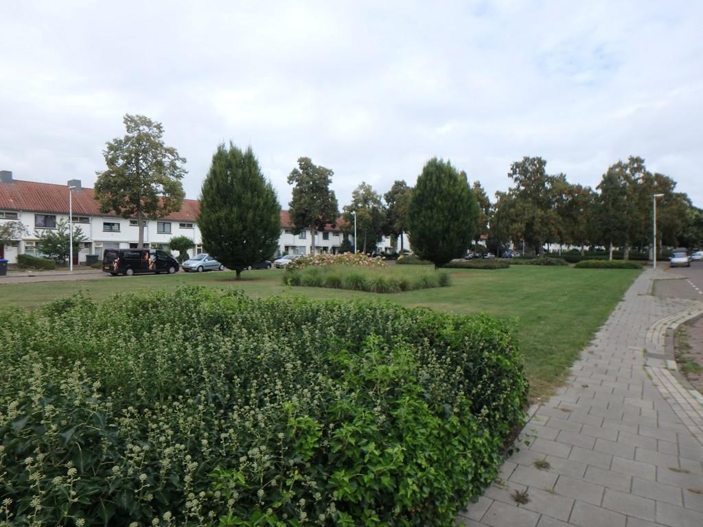 Van Beethovenlaan, Eindhoven