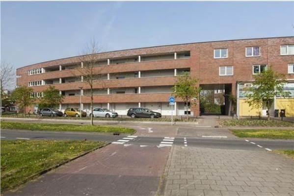 Professor Zonnebloemlaan, Utrecht