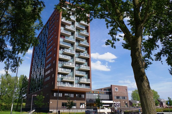 Rotterdam Hollands Tuin  218  3620250