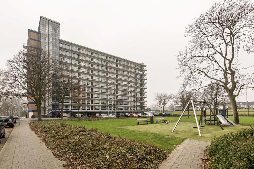 Jan Dammassestraat, Rotterdam