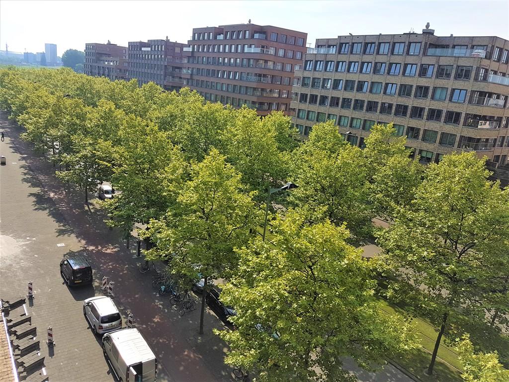 Laan op Zuid, Rotterdam
