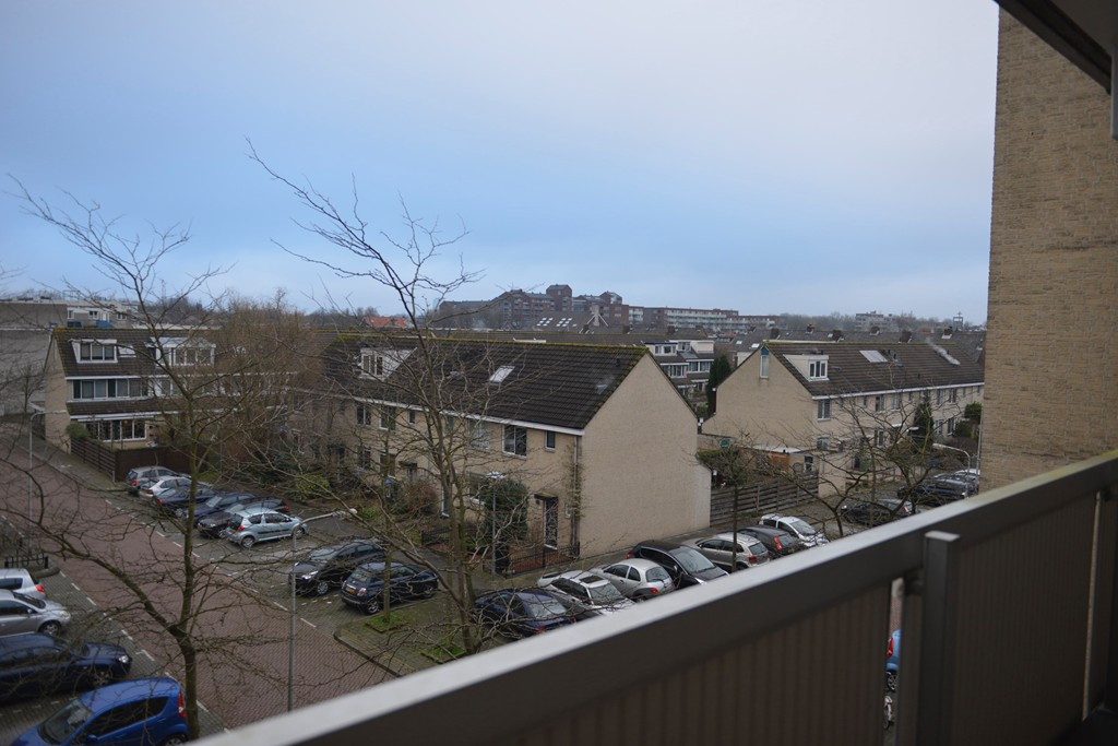 Zeeltstraat, Utrecht