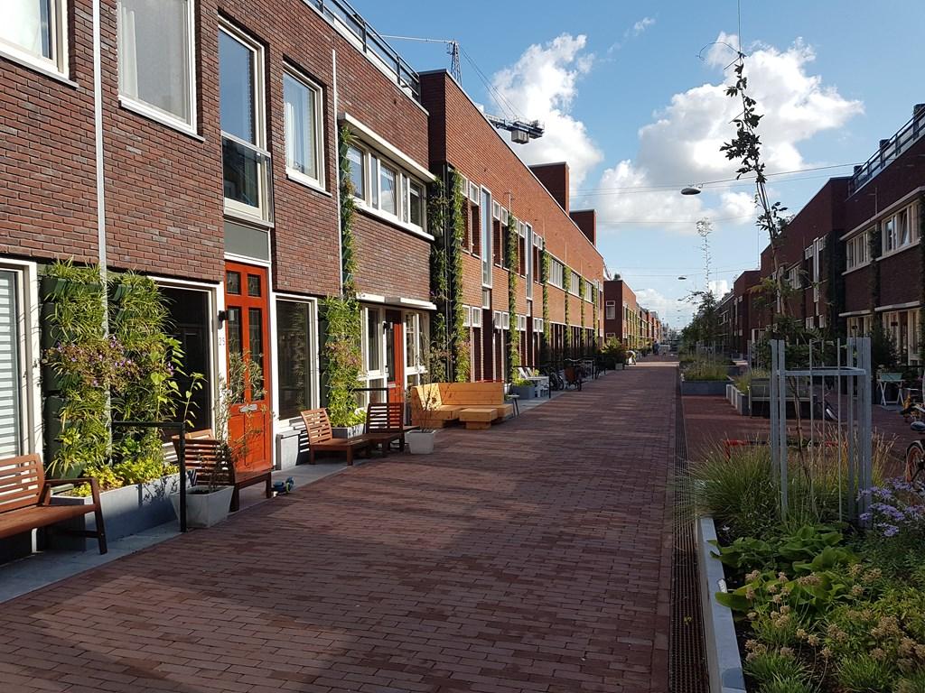 Stettineiland, Amsterdam