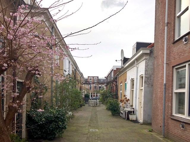 Kortlandstraat, Schiedam