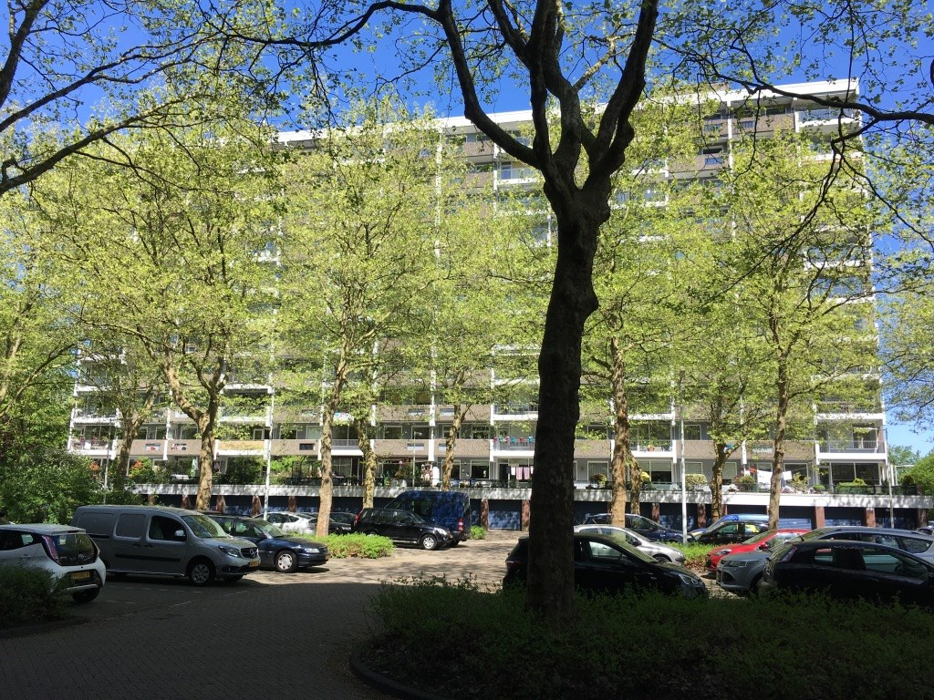 Jisperveldstraat, Amsterdam