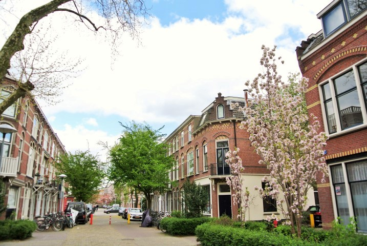 Havikstraat, Utrecht