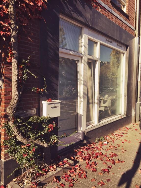 Baarsjesweg, Amsterdam