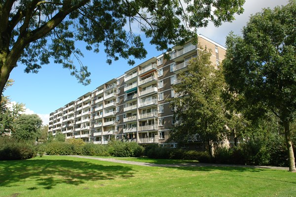 Rotterdam Adriaan Dortsmanstraat  13  3198433