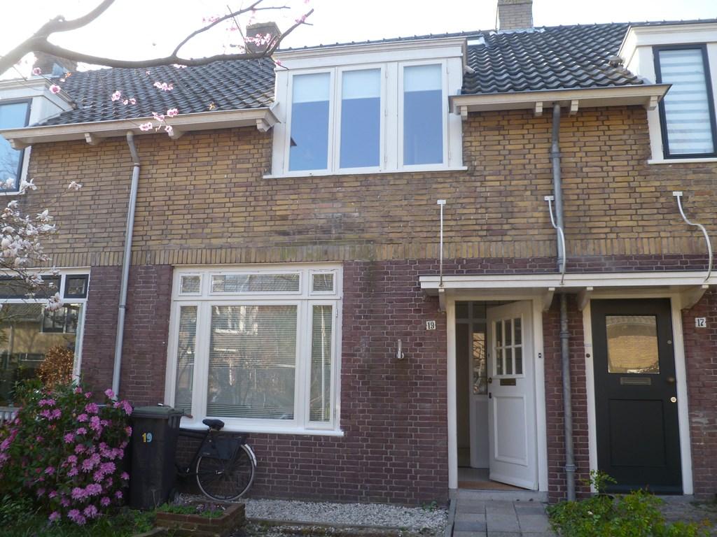 Theemsstraat