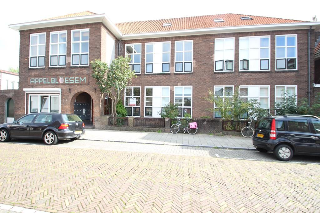 De Savornin Lohmanstraat, Utrecht
