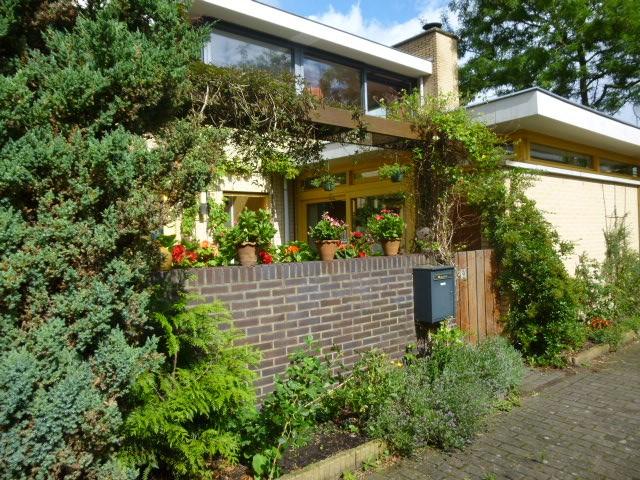 Paradijsvogelhof, Hilversum
