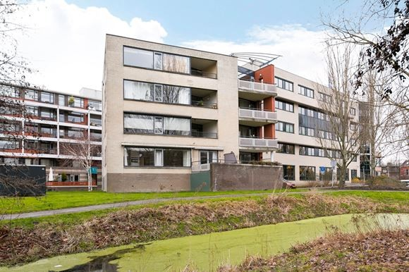Virulypad, Leiden