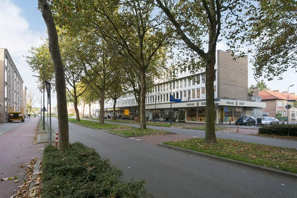 Samuel Morsestraat, 's-Hertogenbosch