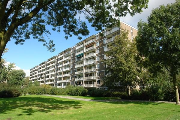 Rotterdam Adriaan Dortsmanstraat  21  3240844