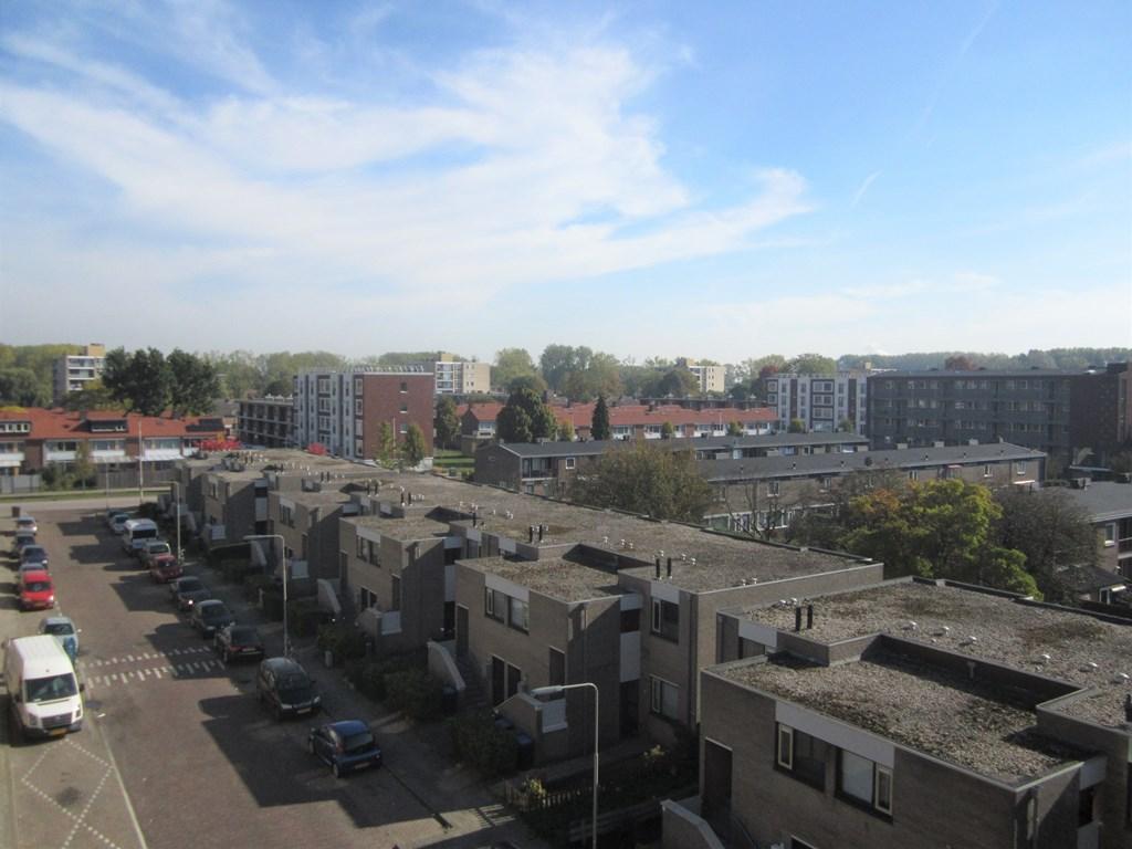 De Bitterstraat, Arnhem