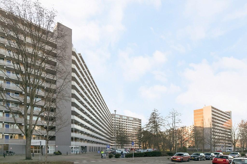 Griegplein, Schiedam