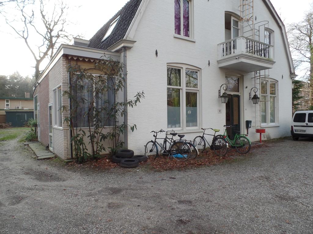Driebergsestraatweg, Doorn
