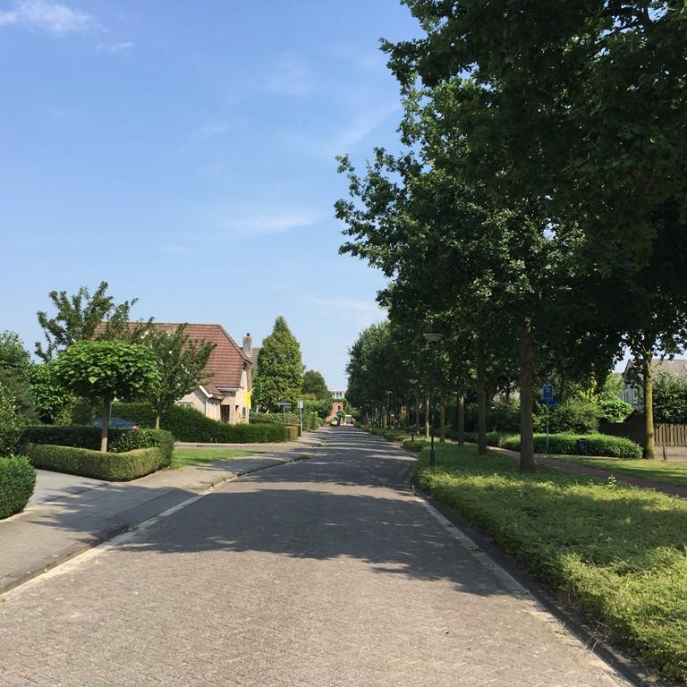 Martinus Nijhoffstraat, Dongen
