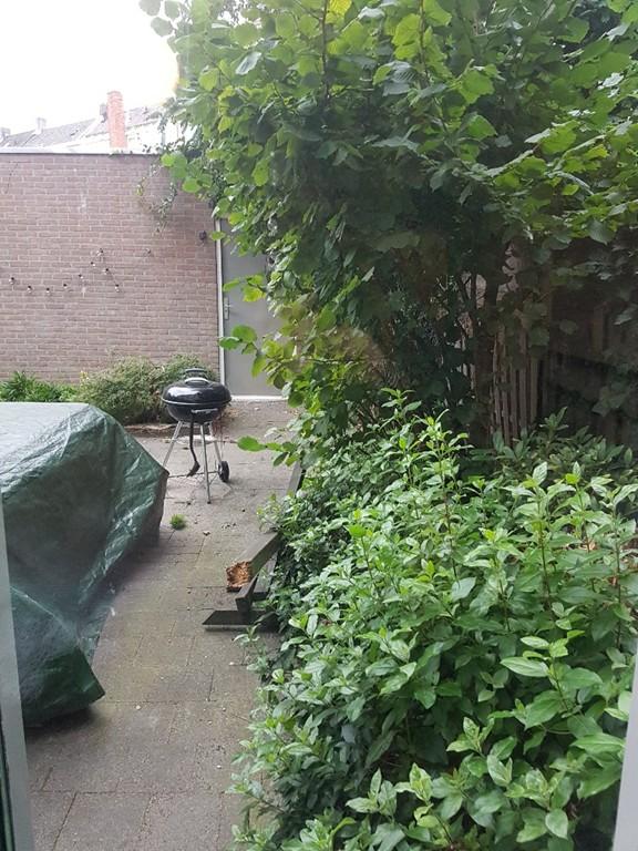 Wilhelminaplein, Eindhoven
