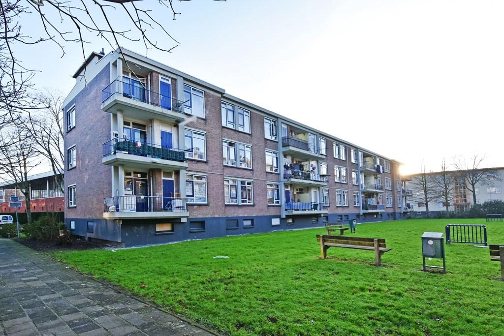Schipborgstraat, The Hague