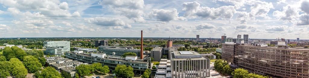 De Lampendriessen, Eindhoven