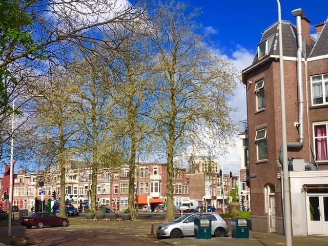 Spaarnestraat